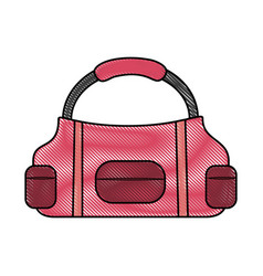 sport bag isolated vector image