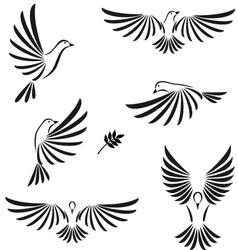 flight of dove vector image