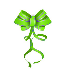 green realistic double gift bow vector image
