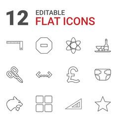 12 geometric icons vector image