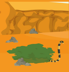 desert snake cartoon vector image