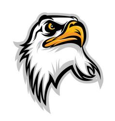 hawk eagle head usa logo mascot 02 vector image