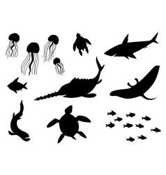 silhouettes fish sea life marine life vector image