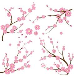 Japanese branch vector