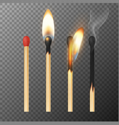 3d realistic match stick icon set closeup vector image