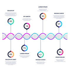 Abstract dna molecule business infographic vector