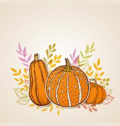 autumn background with orange pumpkins vector image