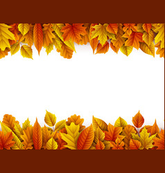 autumn leaves isolated on white background vector image