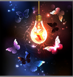 Bulb with night butterflies vector