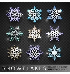 Collection of snowflakes icons isolated on vector