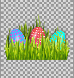 decorated easter eggs in green grass isolated on vector image