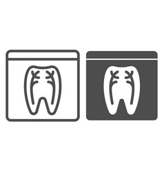 dental xray line and glyph icon tooth xray vector image