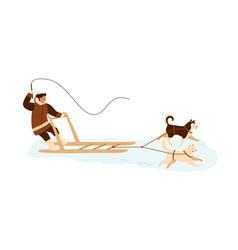 eskimo man riding husky dog sled musher in winter vector image
