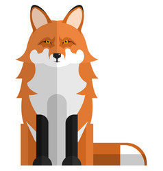 Red fox forest animal flat isolated vector