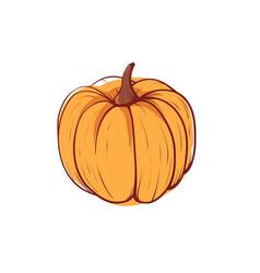 ripe pumpkin isolated icon vector image