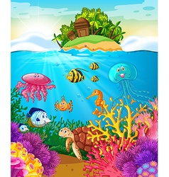 Sea animals swimming under the sea vector image