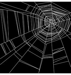 white spider web isolated on the black background vector image