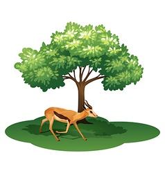 A deer under the tree vector