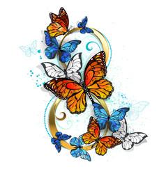 Eight of monarch butterflies vector