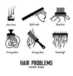 Hair icons set vector