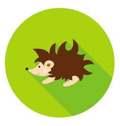 Hedgehog circle icon vector