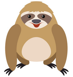 Sloth on white background vector