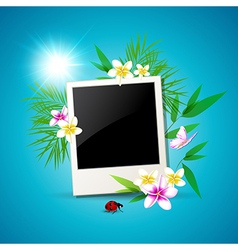 Summer background with photo vector image