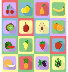 fruits flat icons 19 vector image vector image