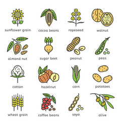 Agricultural commodities plant origin icons vector