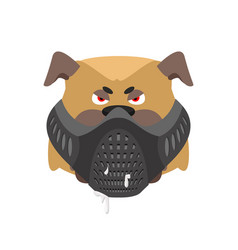 Angry dog in muzzle evil bulldog wearing mask vector