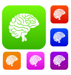 brain set collection vector image