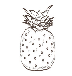 Isolated pineapple outline vector