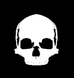 simple skull in full face vector image