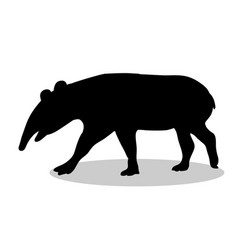 tapir mammal black silhouette animal vector image vector image