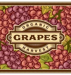 Retro Grapes Harvest Label vector image vector image