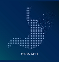 abstract of human stomach on vector image