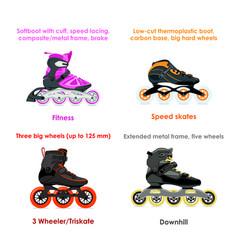 inline skate types - set i vector image vector image