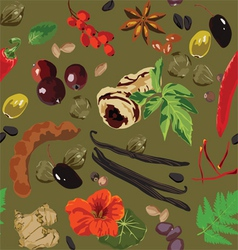 seamless background with spices vector image vector image