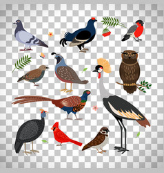 birds icons on transparent background vector image