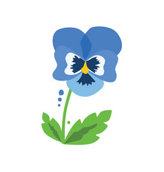 Blue heartsease with leaves vector