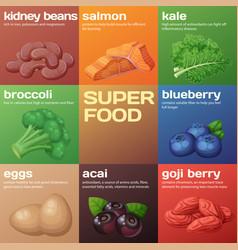 Superfood icons set cartoon vector