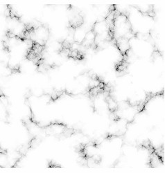 White grey black marble stone background vector