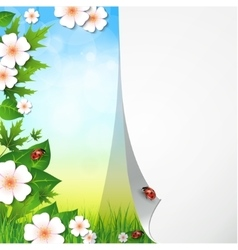 Spring or summer background with grass leaves and vector image vector image