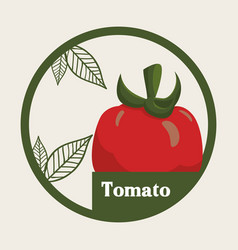 tomato vegetable fresh healthy label vector image