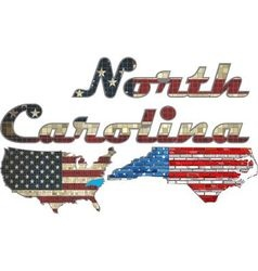 USA state of North Carolina on a brick wall vector image