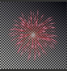 Colorful fireworks on sky firecracker isol vector