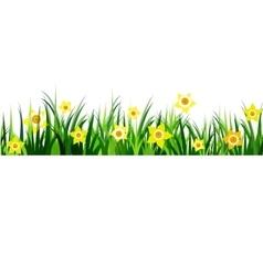 Green Grass seamless daffodils vector
