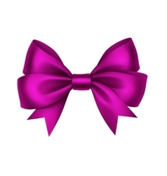 Magenta Satin Gift Bow Isolated on White vector