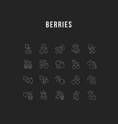 set line icons berries vector image