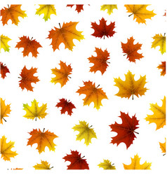 autumn pattern with maple leaves vector image